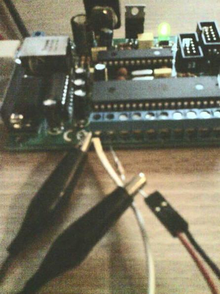 DSC06309.JPG